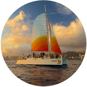 tradewinds sail