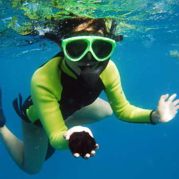 EO Waianae Dolphin Tours