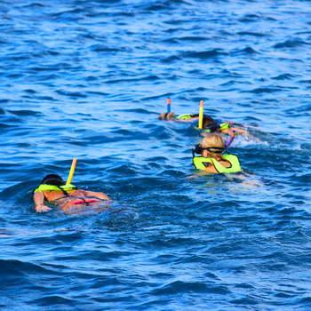 Holokai catamaran snorkelers