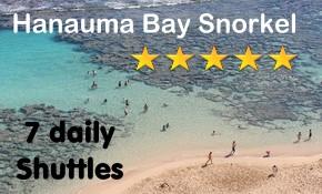 Hanauma Bay Snorkeling Tours