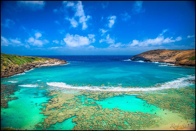 Oahu North Shore Tours Private