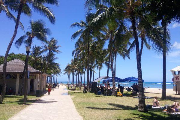 Kuhio Beach Park In Waikiki